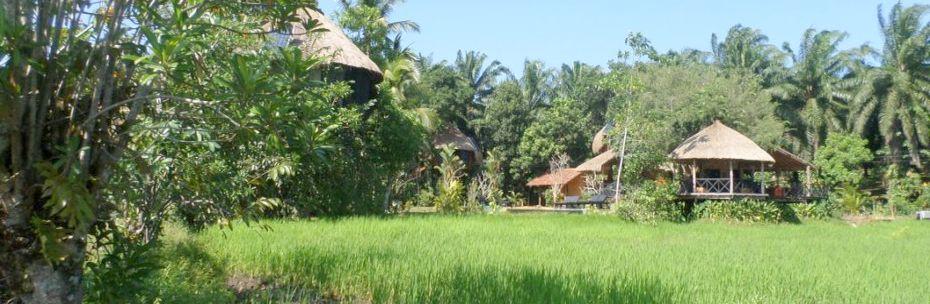 Concept Huma terra Green Lodge