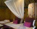 Sri Lanka, Province du Sud, district Galle, Halpathota - Baddegama, Huma Terra, ecolodges, cabane Samba