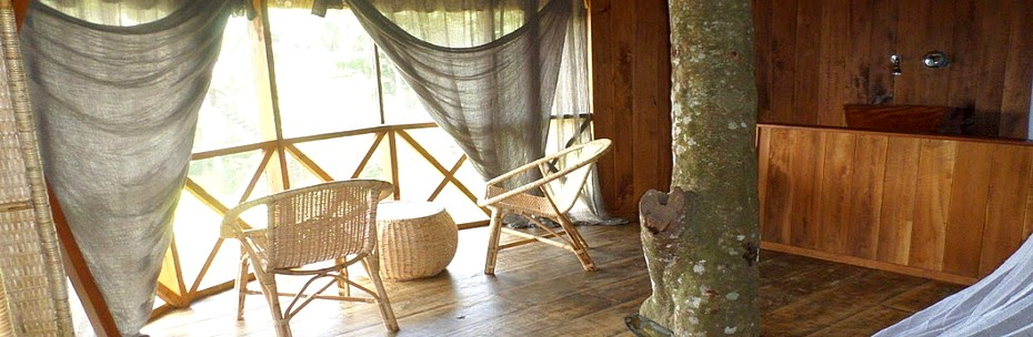Ponni Huma terra Green Lodge